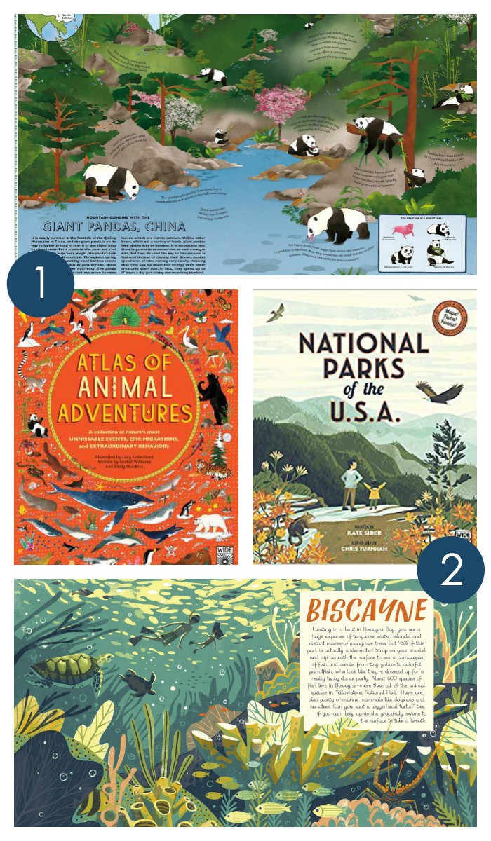 Gorgeous travel books for kids every home library needs